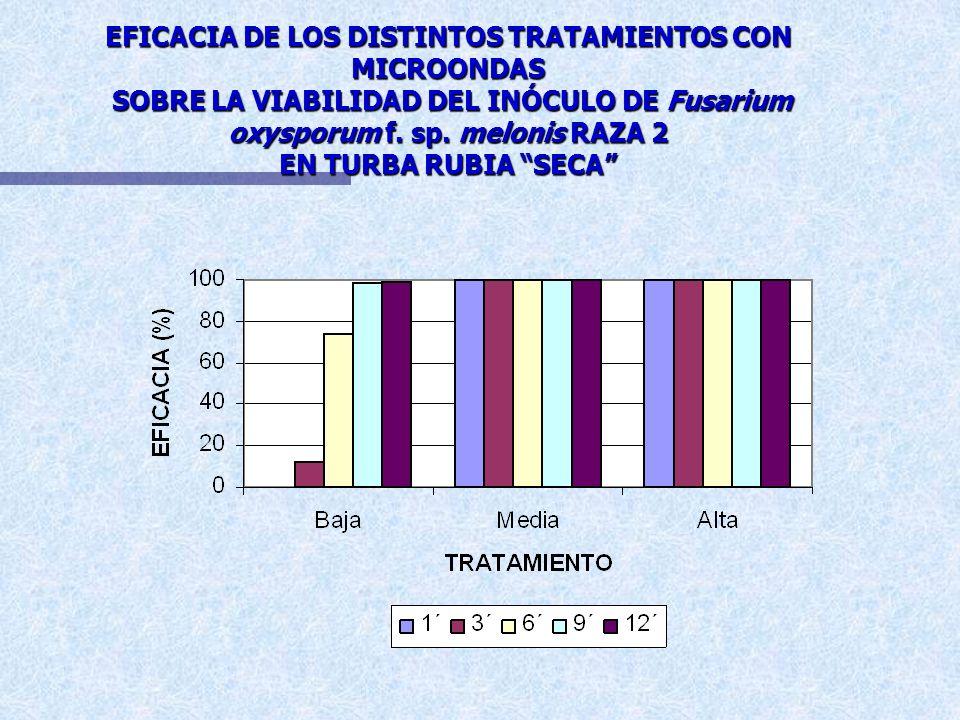 EFICACIA DE LOS DISTINTOS TRATAMIENTOS CON MICROONDAS SOBRE LA VIABILIDAD DE Fusarium oxysporum f. sp. melonis RAZA 2 EN TURBA RUBIA SECA