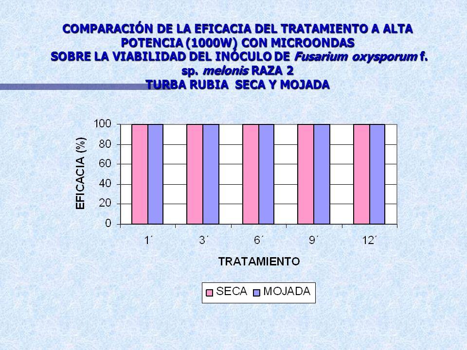 COMPARACIÓN DE LA EFICACIA DEL TRATAMIENTO A MEDIA POTENCIA (500W) CON MICROONDAS SOBRE LA VIABILIDAD DEL INÓCULO DE Fusarium oxysporum f. sp. melonis