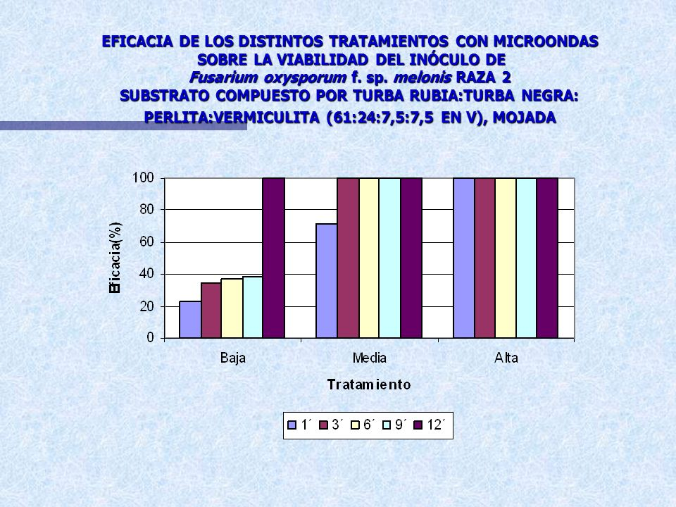 EFICACIA DE LOS DISTINTOS TRATAMIENTOS CON MICROONDAS SOBRE LA VIABILIDAD DEL INÓCULO DE Fusarium oxysporum f. sp. melonis RAZA 2 TURBA RUBIA:TURBA NE