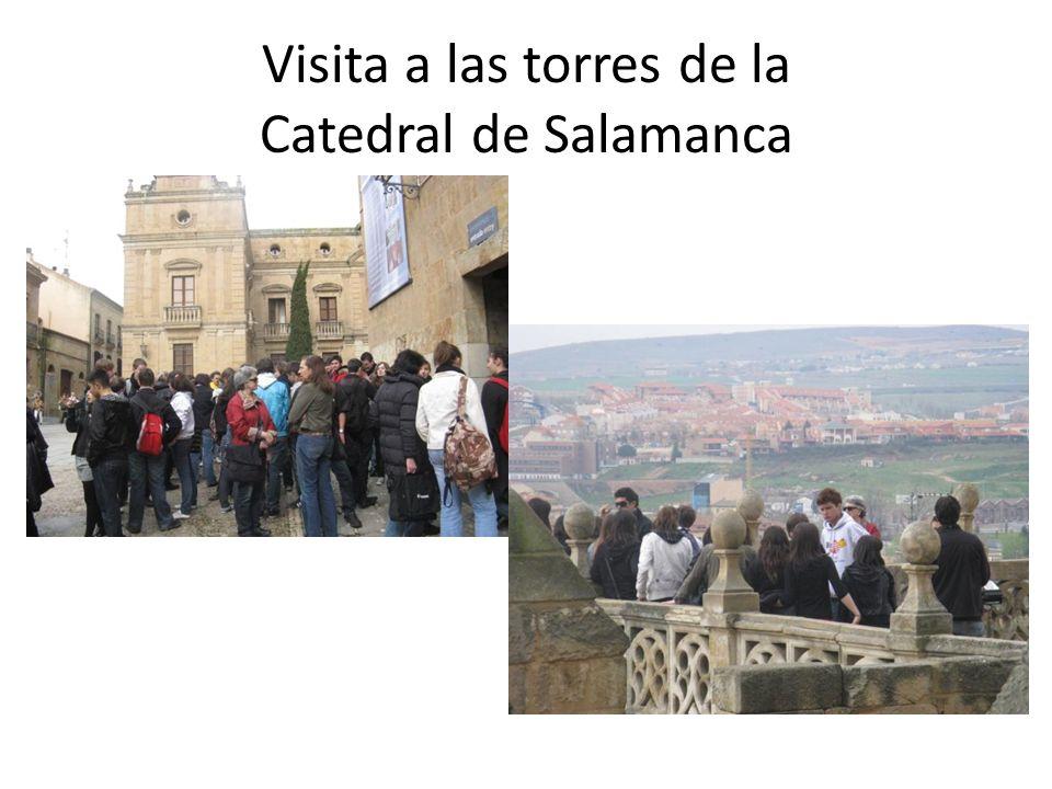 Visita a las torres de la Catedral de Salamanca
