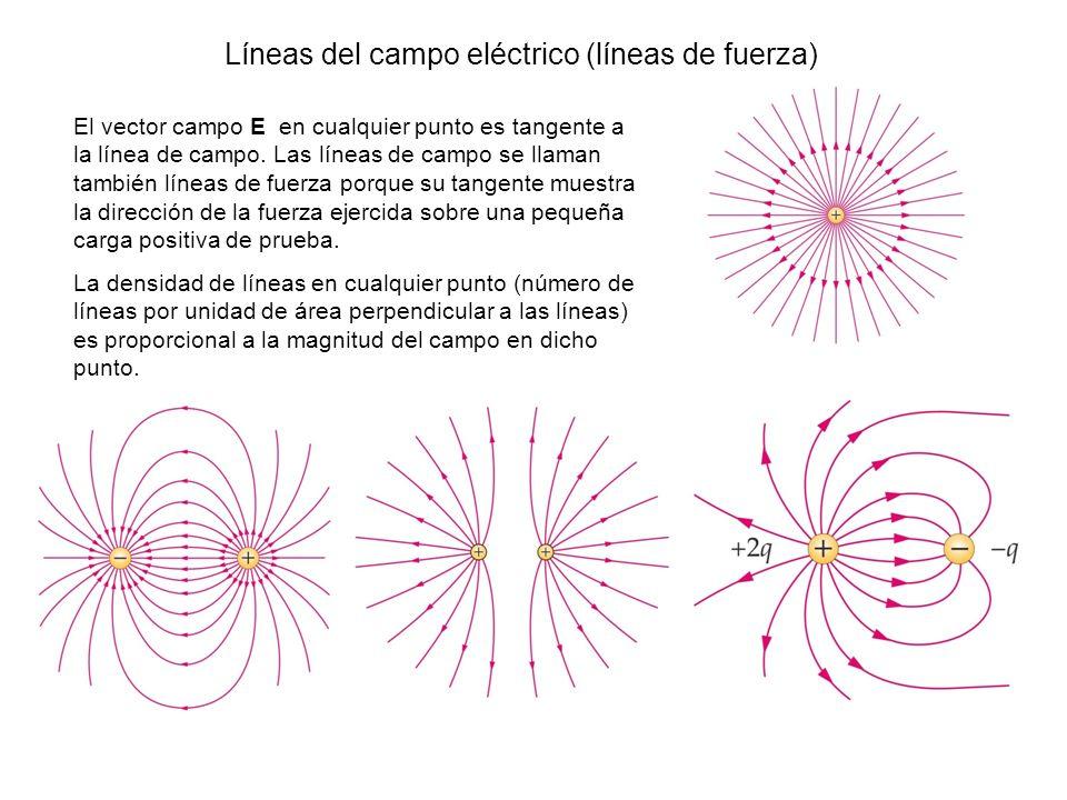Líneas del campo eléctrico (líneas de fuerza) El vector campo E en cualquier punto es tangente a la línea de campo. Las líneas de campo se llaman tamb