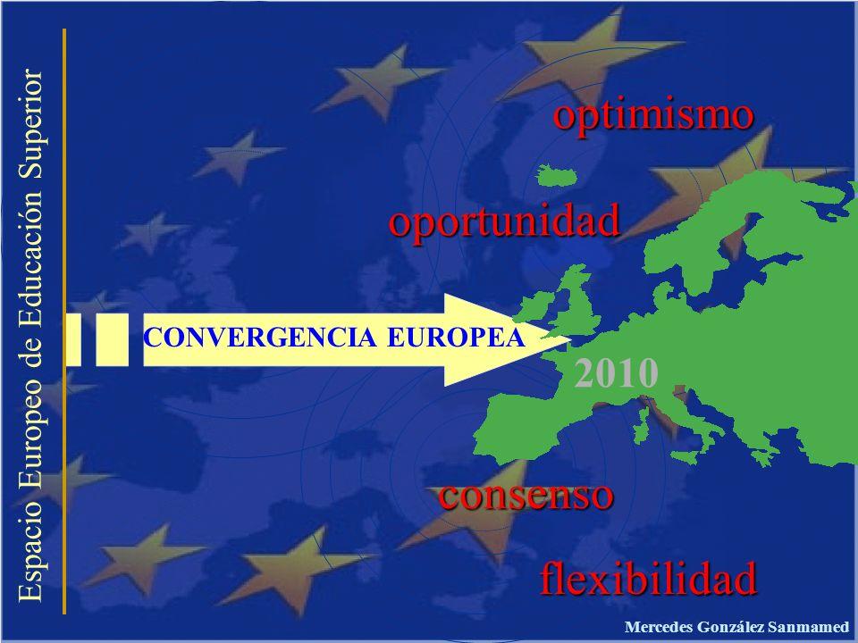 Espacio Europeo de Educación Superior LA GUÍA DOCENTE DE LA MATERIA COMPETENCIAS INSTRUMENTALES HABILIDADES COGNOSCITIVAS: Comprender y manipular ideas y pensamientos CAPACIDADES METODOLÓGICAS: organizarse, tomar decisiones, resolver problemas DESTREZAS TECNOLÓGICAS: destrezas de Computación y gerencia de información DESTREZAS LINGÜÍSTICAS: comunicación oral y escrita.