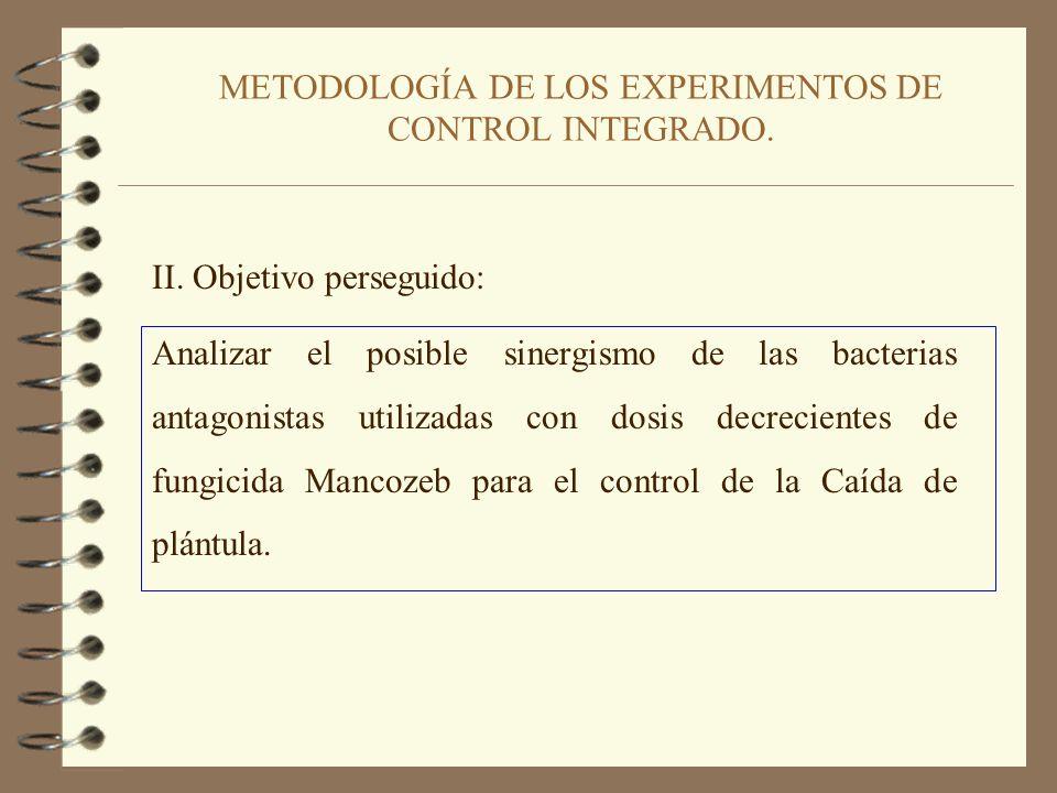 CONCLUSIONES DE LOS EXPERIMENTOS DE CONTROL BIOLÓGICO 1. Riego. 2. B5 + R117 como tratamiento de Control Biológico más eficaz. 3. El Control Biológico