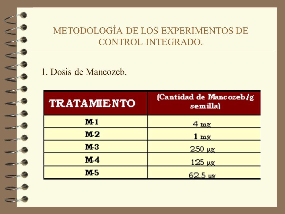 METODOLOGÍA DE LOS EXPERIMENTOS DE CONTROL INTEGRADO. II. Objetivo perseguido: Analizar el posible sinergismo de las bacterias antagonistas utilizadas