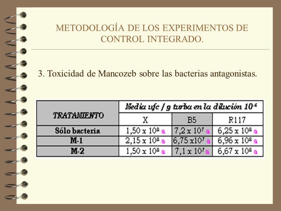 METODOLOGÍA DE LOS EXPERIMENTOS DE CONTROL INTEGRADO. 2. Eficacia de dosis decrecientes de Mancozeb en el Control de Pythium ultimum en pepino.