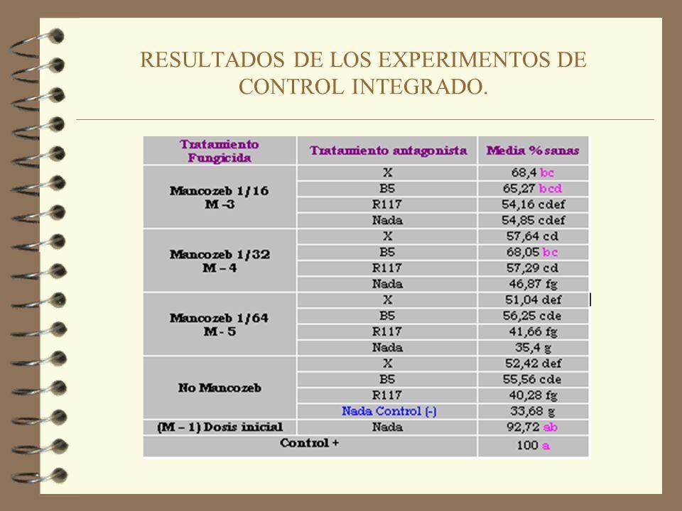 METODOLOGÍA DE LOS EXPERIMENTOS DE CONTROL INTEGRADO. Cámara de crecimiento. Seguimiento experimentos C.I.