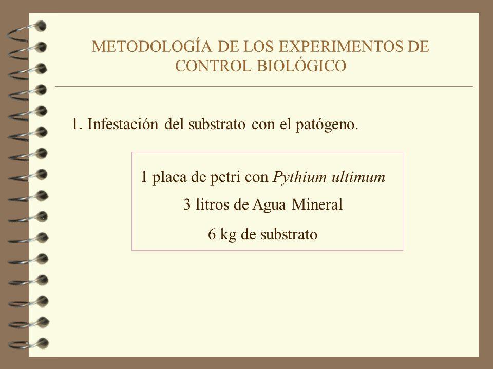METODOLOGÍA DE LOS EXPERIMENTOS DE CONTROL BIOLÓGICO 1.