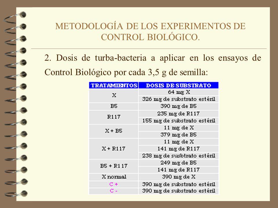 METODOLOGÍA DE LOS EXPERIMENTOS DE CONTROL BIOLÓGICO 1. Infestación del substrato con el patógeno. 1 placa de petri con Pythium ultimum 3 litros de Ag