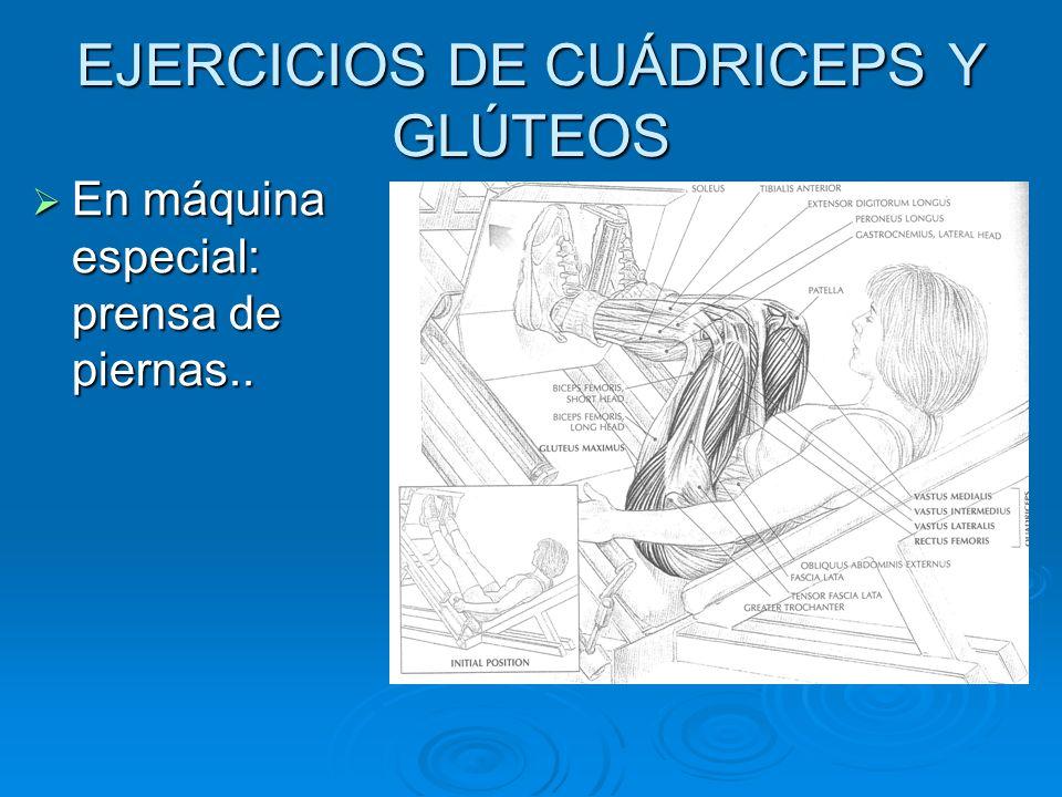 EJERCICIOS DE CUÁDRICEPS Y GLÚTEOS En máquina especial: prensa de piernas.. En máquina especial: prensa de piernas..