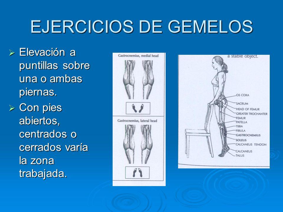 EJERCICIOS DE GEMELOS Elevación a puntillas sobre una o ambas piernas. Elevación a puntillas sobre una o ambas piernas. Con pies abiertos, centrados o