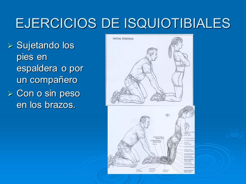 EJERCICIOS DE ISQUIOTIBIALES Sujetando los pies en espaldera o por un compañero Sujetando los pies en espaldera o por un compañero Con o sin peso en l