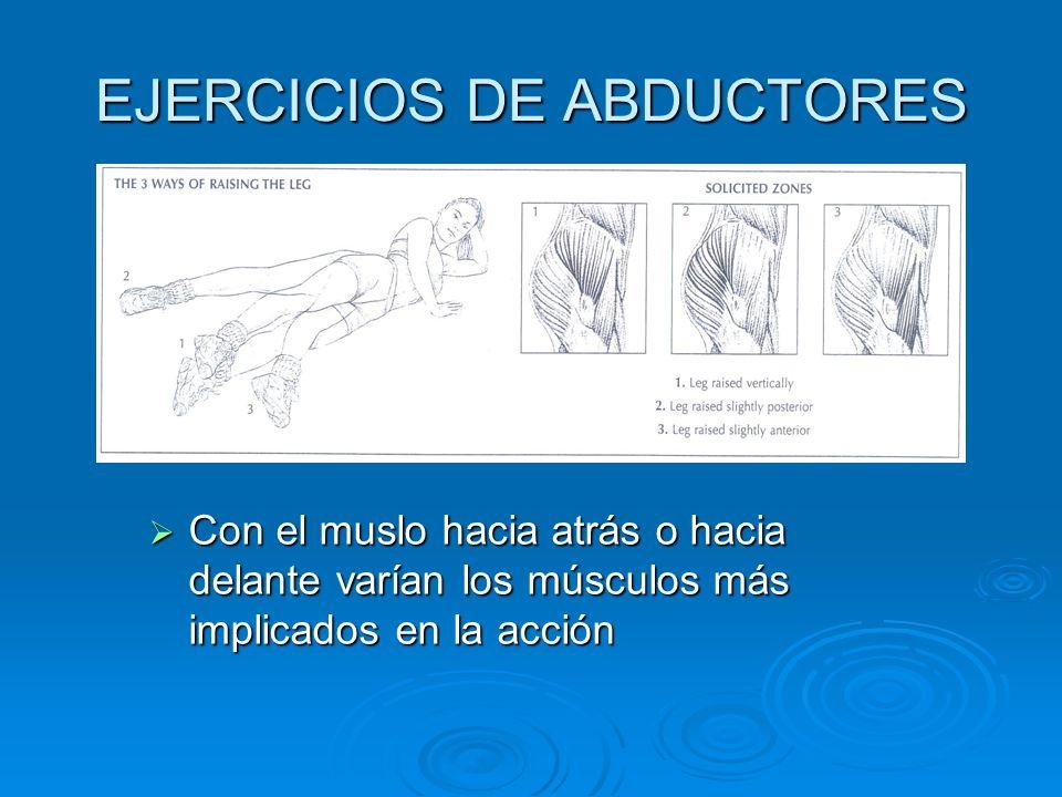 Con el muslo hacia atrás o hacia delante varían los músculos más implicados en la acción Con el muslo hacia atrás o hacia delante varían los músculos