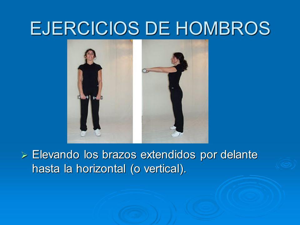 EJERCICIOS DE HOMBROS Elevando los brazos extendidos por delante hasta la horizontal (o vertical). Elevando los brazos extendidos por delante hasta la