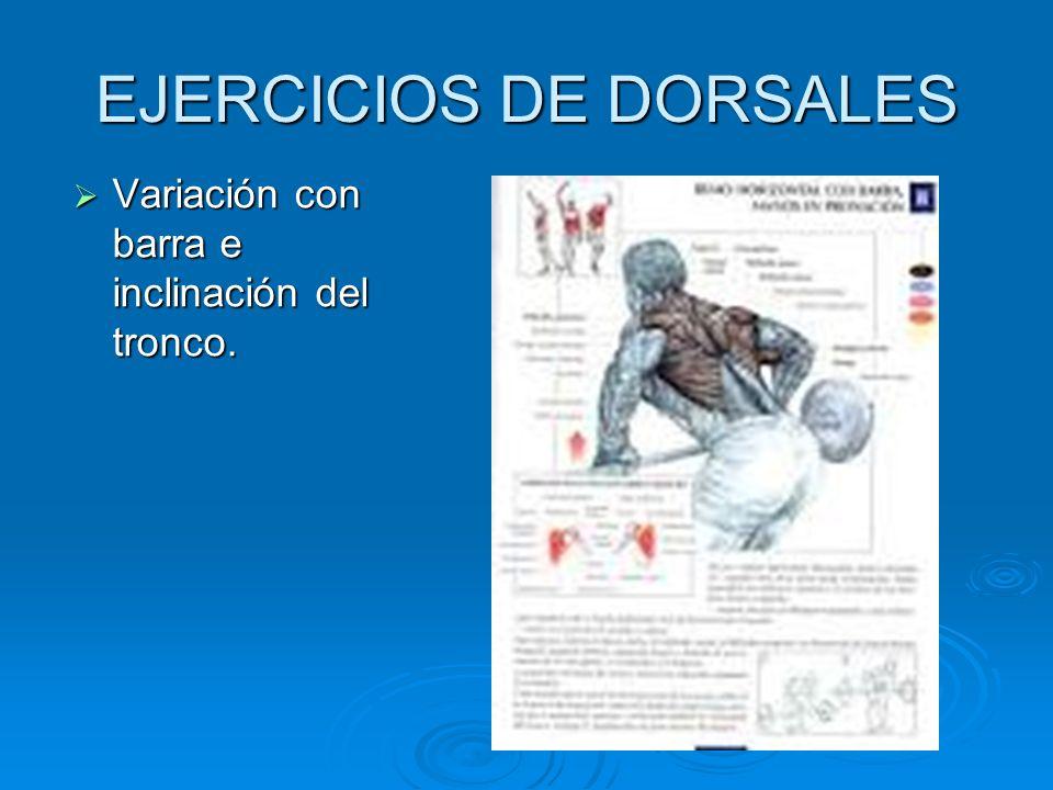 EJERCICIOS DE DORSALES Variación con barra e inclinación del tronco. Variación con barra e inclinación del tronco.