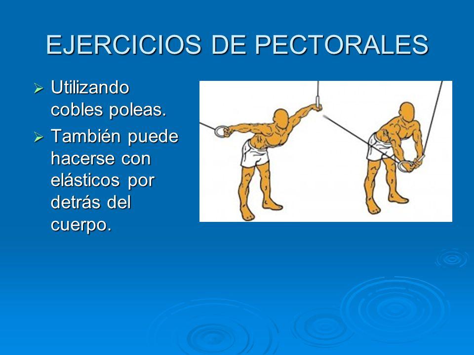 EJERCICIOS DE PECTORALES Utilizando cobles poleas. Utilizando cobles poleas. También puede hacerse con elásticos por detrás del cuerpo. También puede