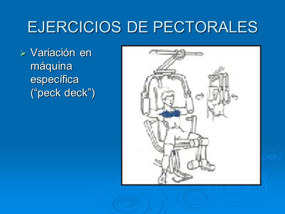 EJERCICIOS DE PECTORALES Variación en máquina específica (peck deck) Variación en máquina específica (peck deck)