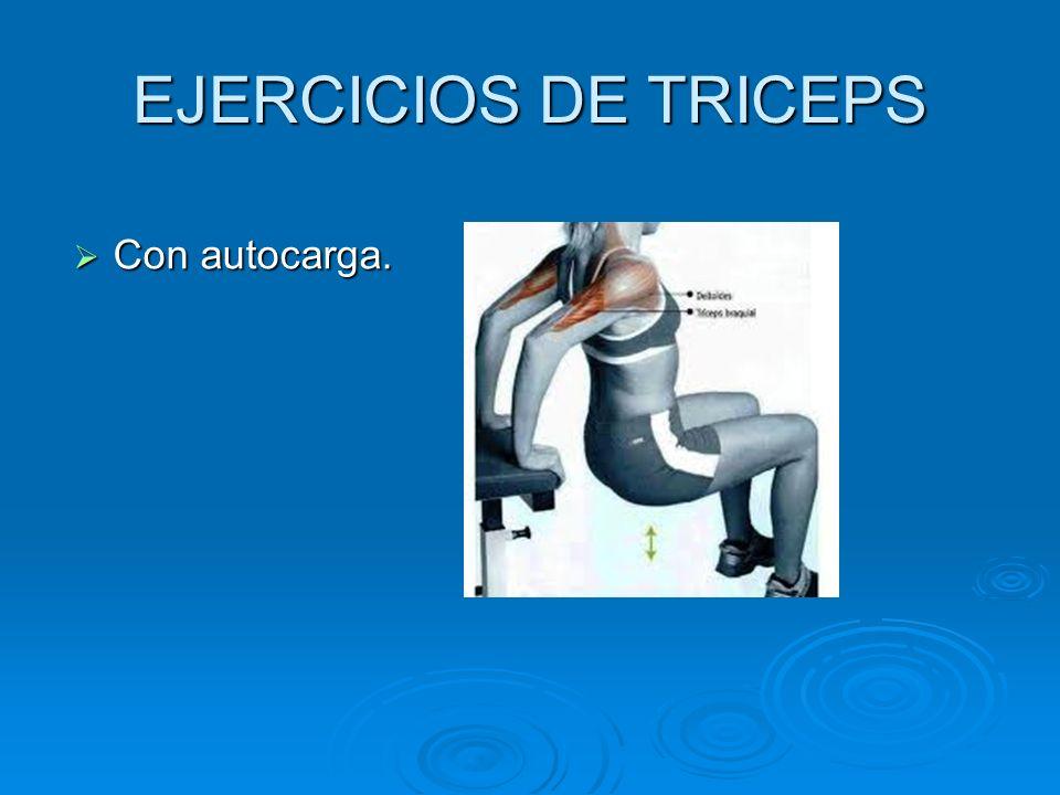 EJERCICIOS DE TRICEPS Con autocarga. Con autocarga.