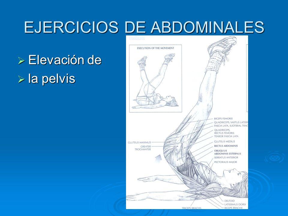 EJERCICIOS DE ABDOMINALES Formas del abdomen. Formas del abdomen.
