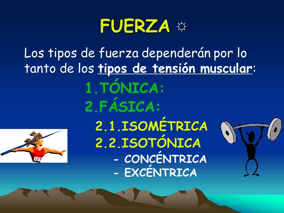 TIPOS DE FUERZA Desde el punto de vista del ejercicio físico y el deporte la clasificación más simple sería: 1.