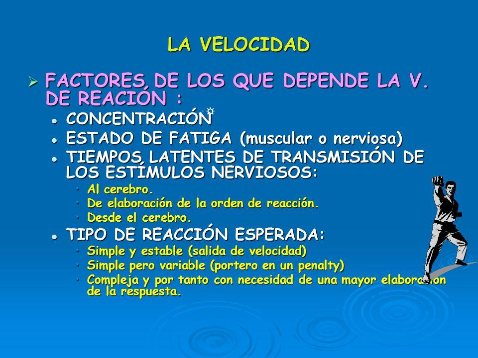 LA VELOCIDAD FACTORES DE LOS QUE DEPENDE LA V. DE REACIÓN : FACTORES DE LOS QUE DEPENDE LA V. DE REACIÓN : CONCENTRACIÓN CONCENTRACIÓN ESTADO DE FATIG