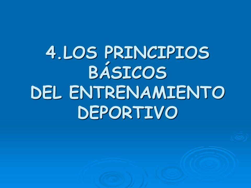 4.LOS PRINCIPIOS BÁSICOS DEL ENTRENAMIENTO DEPORTIVO