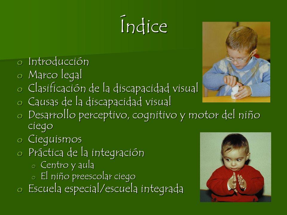 Índice o Introducción o Marco legal o Clasificación de la discapacidad visual o Causas de la discapacidad visual o Desarrollo perceptivo, cognitivo y