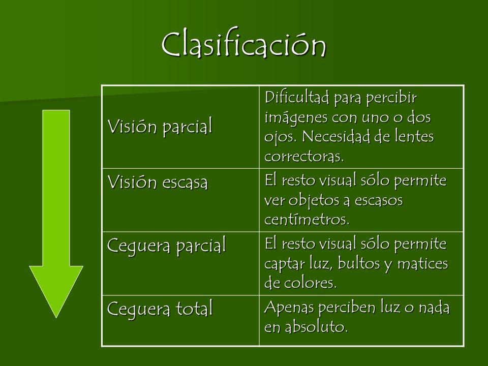 Clasificación Visión parcial Dificultad para percibir imágenes con uno o dos ojos. Necesidad de lentes correctoras. Visión escasa El resto visual sólo