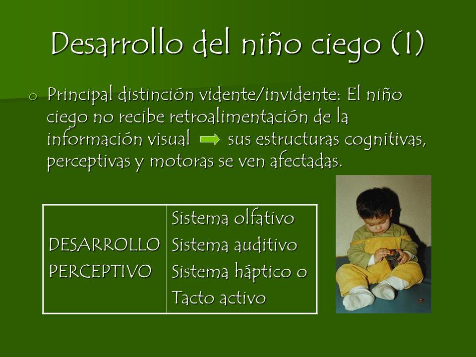 Desarrollo del niño ciego (II) DESARROLLOCOGNITIVO Dificultad comparación inteligencia videntes/invidentes Hasta los 4 meses: similar Desde los 4 meses: fracaso exploratorio del niño ciego.