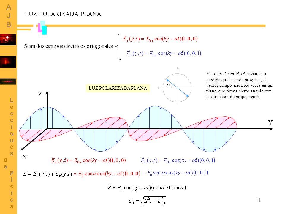 1 LUZ POLARIZADA PLANA Sean dos campos eléctricos ortogonales X Y Z X Z Visto en el sentido de avance, a medida que la onda progresa, el vector campo