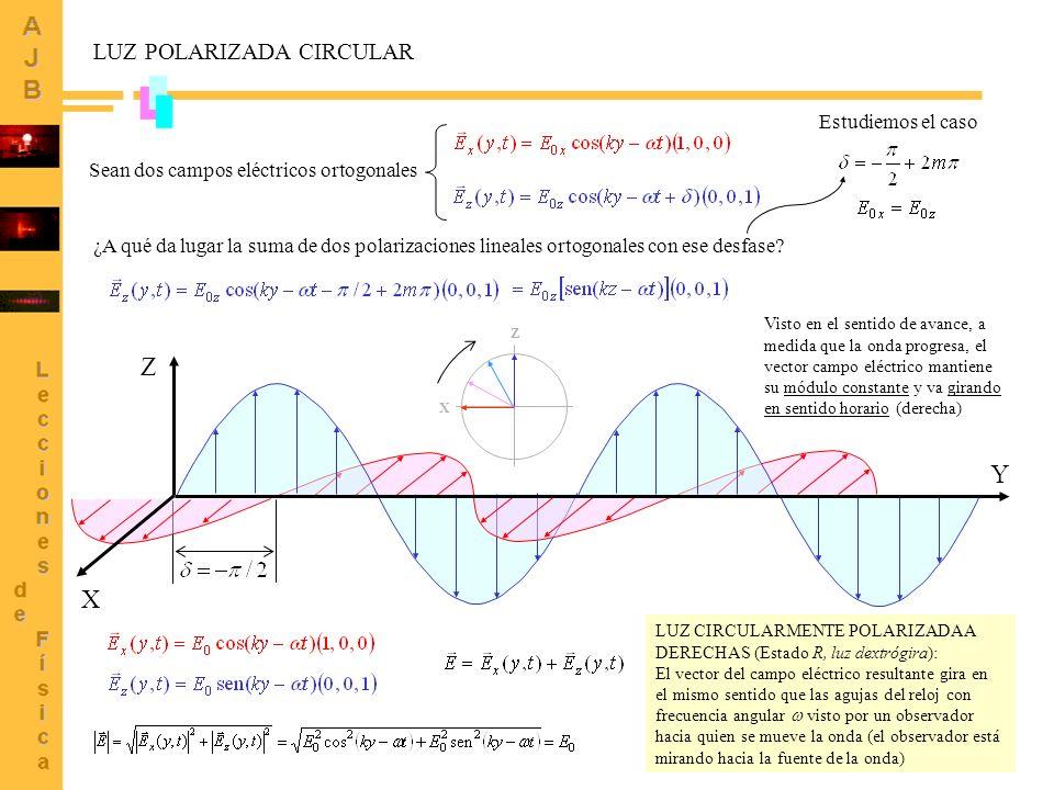 5 LUZ POLARIZADA CIRCULAR (2) Sean dos campos eléctricos ortogonales Estudiemos el caso ¿A qué da lugar la suma de dos polarizaciones lineales ortogonales con ese desfase.