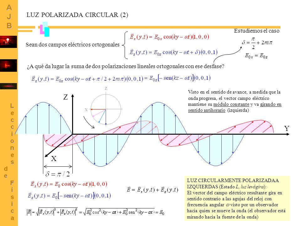 6 X Y Z LUZ POLARIZADA ELÍPTICA Sean dos campos eléctricos ortogonales Caso general: valores cualesquiera para El vector campo eléctrico gira en sentido horario si 0 (dicho de otro modo si > > 0) describiendo una elipse a medida que avanza: luz elípticamente polarizada.