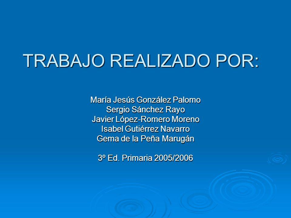 TRABAJO REALIZADO POR: María Jesús González Palomo Sergio Sánchez Rayo Javier López-Romero Moreno Isabel Gutiérrez Navarro Gema de la Peña Marugán 3º