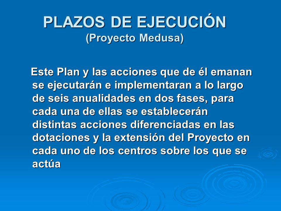 PLAZOS DE EJECUCIÓN (Proyecto Medusa) Este Plan y las acciones que de él emanan se ejecutarán e implementaran a lo largo de seis anualidades en dos fa
