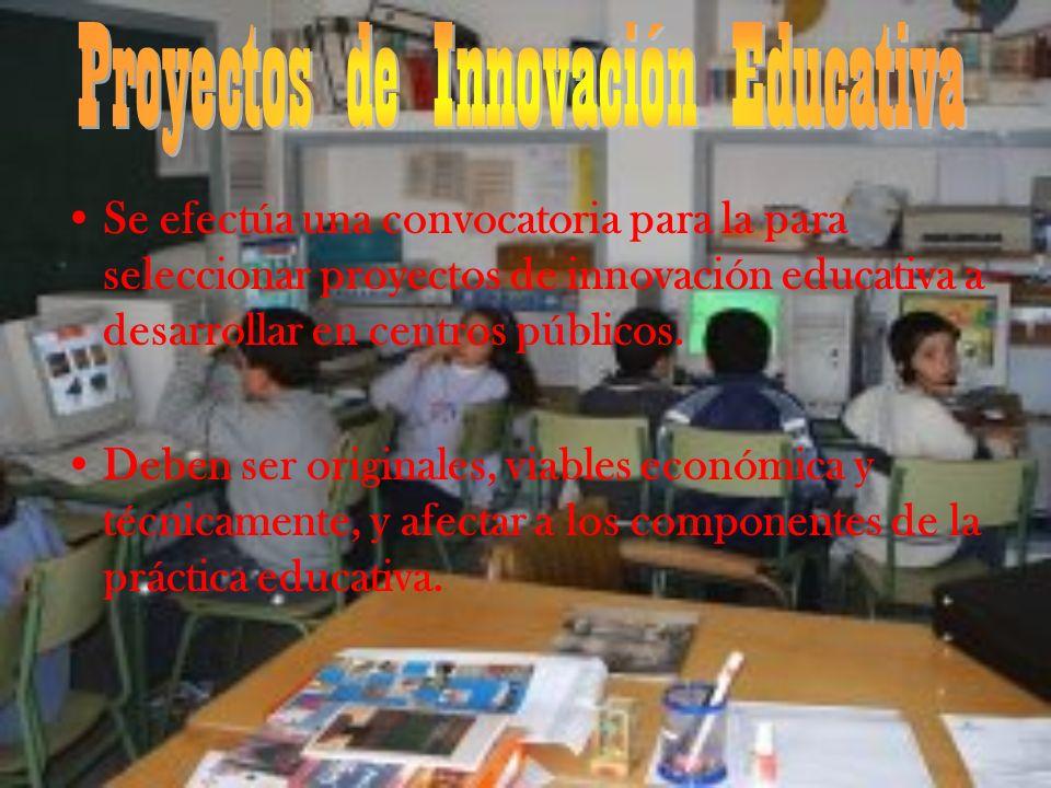 Los proyectos presentarán: 1.Identificación 2.Planificación 3.Presupuesto estimado y desglosado 4.Valoración
