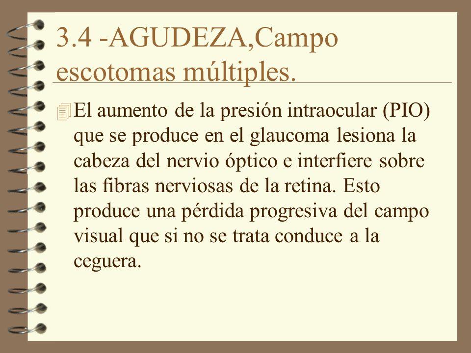 3.4 -AGUDEZA,Campo escotomas múltiples. 4 El aumento de la presión intraocular (PIO) que se produce en el glaucoma lesiona la cabeza del nervio óptico