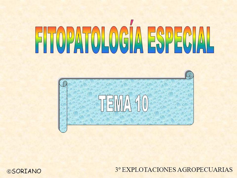 SORIANO FITOPATOLOGÍA ESPECIAL TEMA 10 DIPTEROS Introducción.