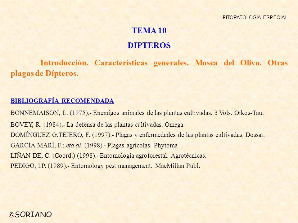SORIANO FITOPATOLOGÍA ESPECIAL TEMA 10 DIPTEROS Introducción. Características generales. Mosca del Olivo. Otras plagas de Dípteros. BIBLIOGRAFÍA RECOM