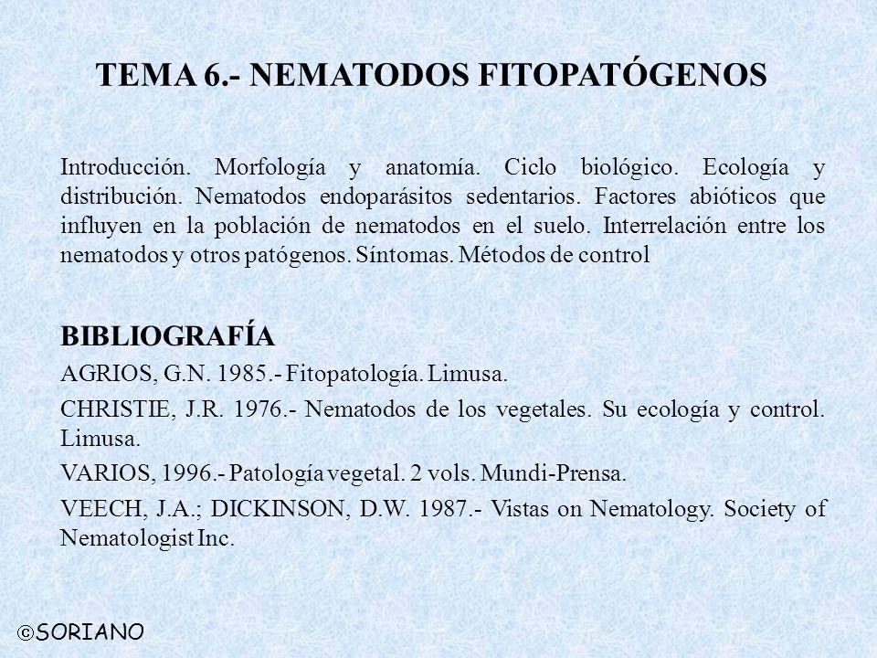 SORIANO TEMA 6.- NEMATODOS FITOPATÓGENOS Introducción. Morfología y anatomía. Ciclo biológico. Ecología y distribución. Nematodos endoparásitos sedent