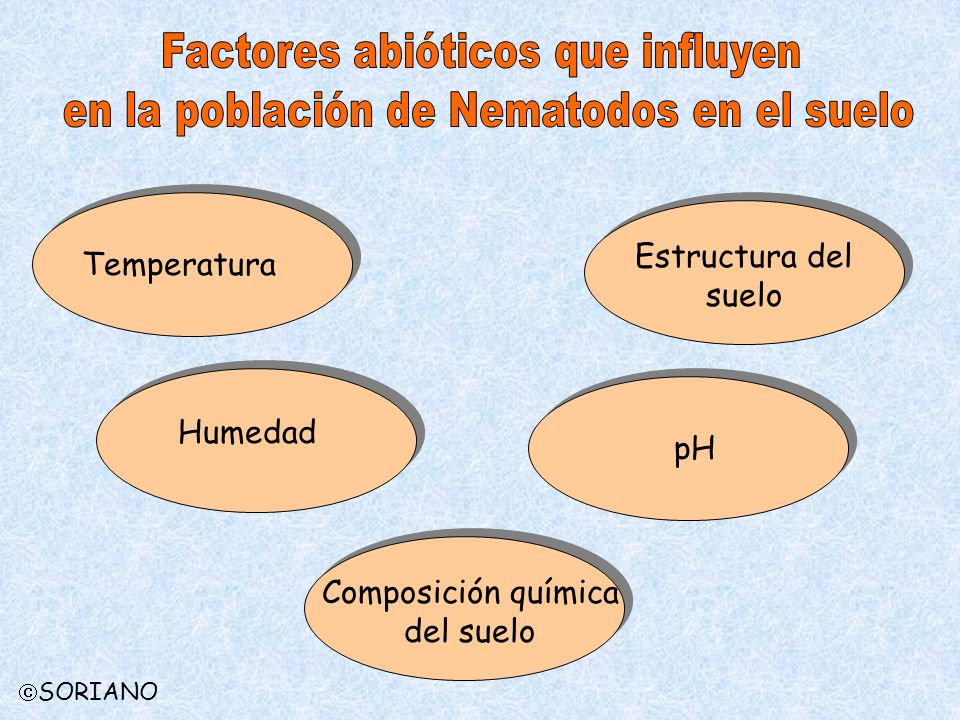 Temperatura Estructura del suelo Humedad pH Composición química del suelo