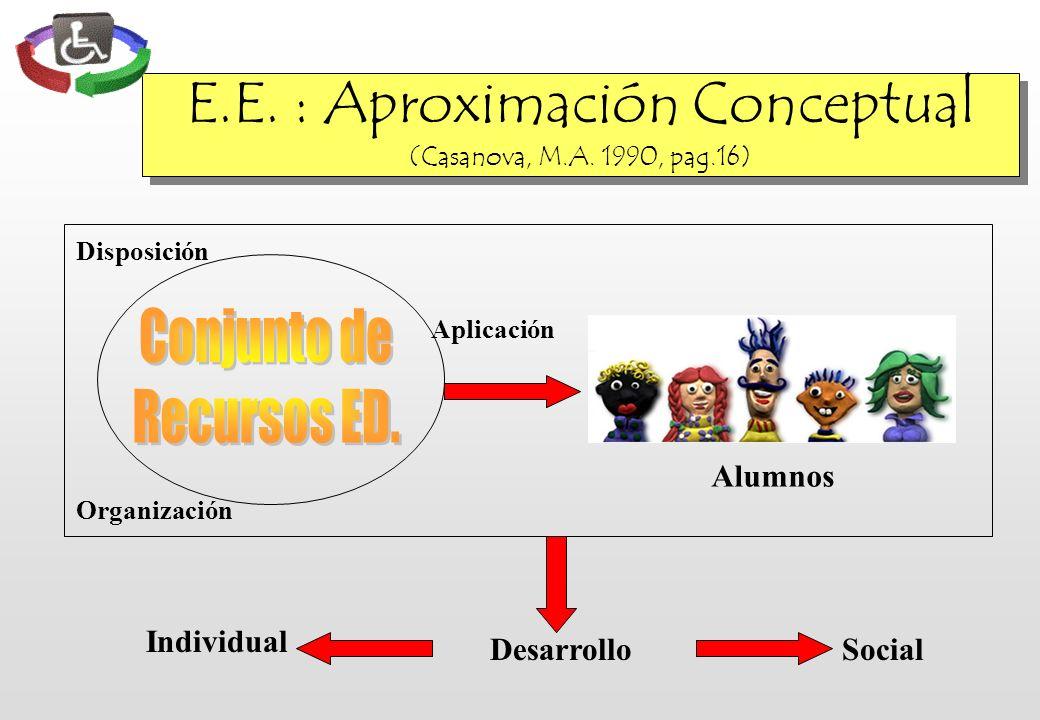 E.E. : Aproximación Conceptual (Casanova, M.A. 1990, pag.16) Desarrollo Individual Social Alumnos Disposición Aplicación Organización