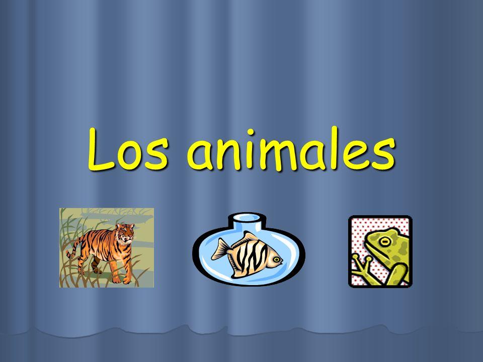 Los animales Los animales