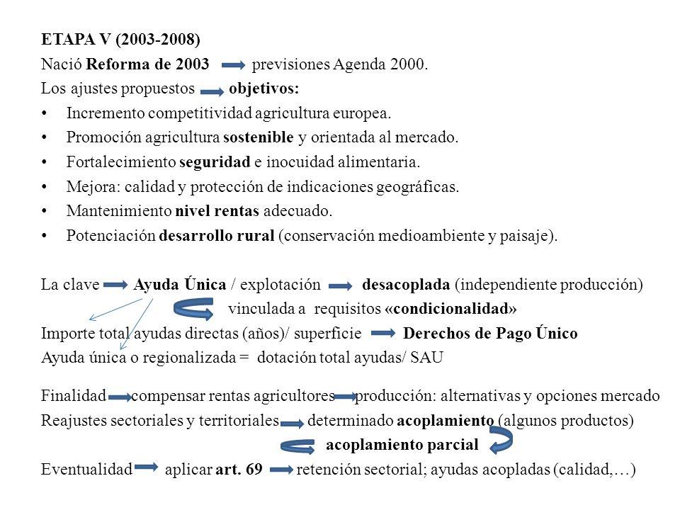 ETAPA V (2003-2008) Nació Reforma de 2003 previsiones Agenda 2000. Los ajustes propuestos objetivos: Incremento competitividad agricultura europea. Pr