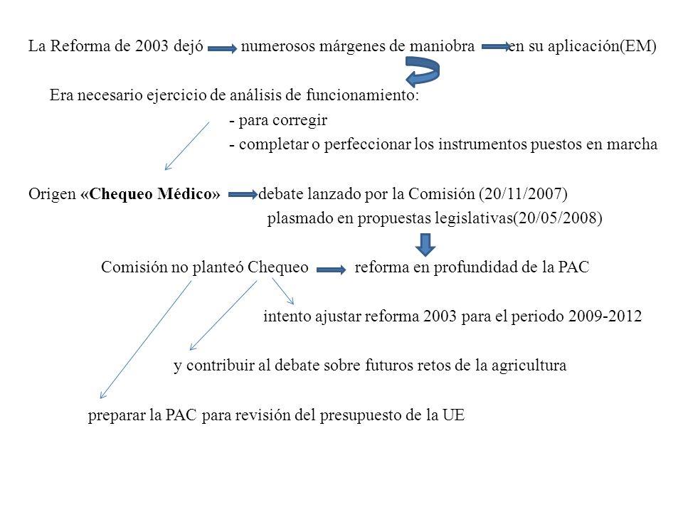 La Reforma de 2003 dejó numerosos márgenes de maniobra en su aplicación(EM) Era necesario ejercicio de análisis de funcionamiento: - para corregir - c
