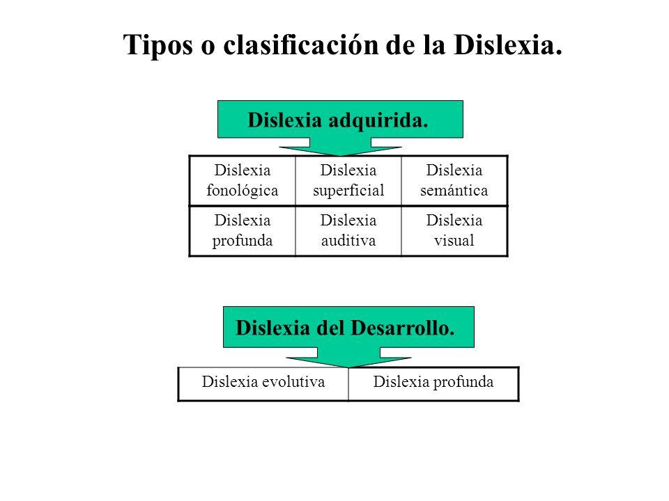 Tipos o clasificación de la Dislexia. Dislexia profunda Dislexia auditiva Dislexia visual Dislexia evolutivaDislexia profunda Dislexia fonológica Disl