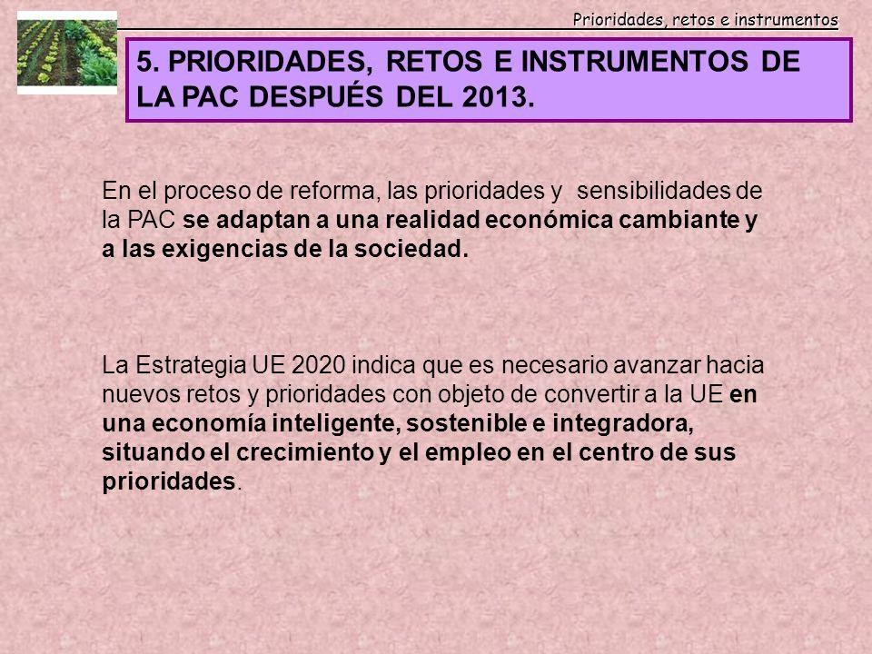 Prioridades, retos e instrumentos Prioridades, retos e instrumentos 5. PRIORIDADES, RETOS E INSTRUMENTOS DE LA PAC DESPUÉS DEL 2013. En el proceso de