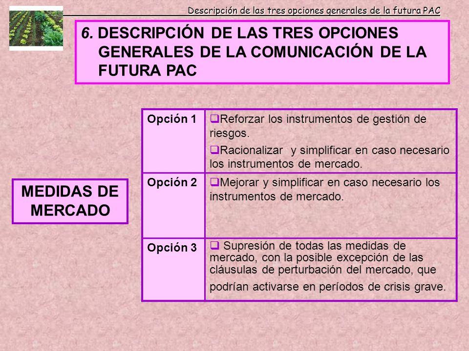 Descripción de las tres opciones generales de la futura PAC 6. DESCRIPCIÓN DE LAS TRES OPCIONES GENERALES DE LA COMUNICACIÓN DE LA FUTURA PAC MEDIDAS
