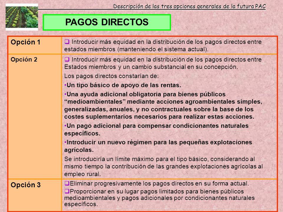 Descripción de las tres opciones generales de la futura PAC PAGOS DIRECTOS Opción 1 Introducir más equidad en la distribución de los pagos directos en