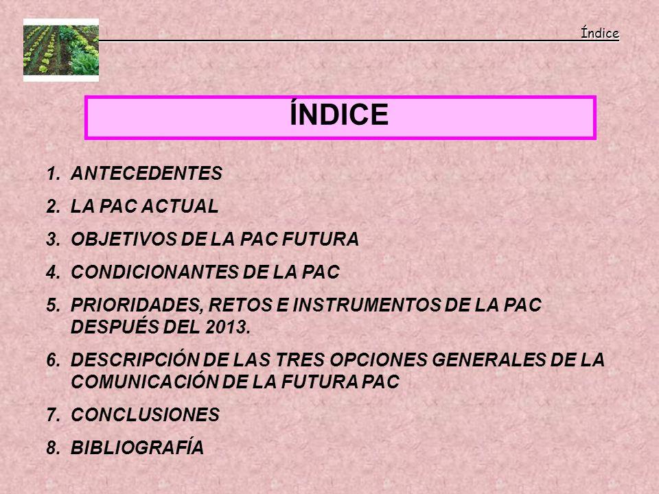 ÍNDICE Índice Índice 1.ANTECEDENTES 2.LA PAC ACTUAL 3.OBJETIVOS DE LA PAC FUTURA 4.CONDICIONANTES DE LA PAC 5.PRIORIDADES, RETOS E INSTRUMENTOS DE LA