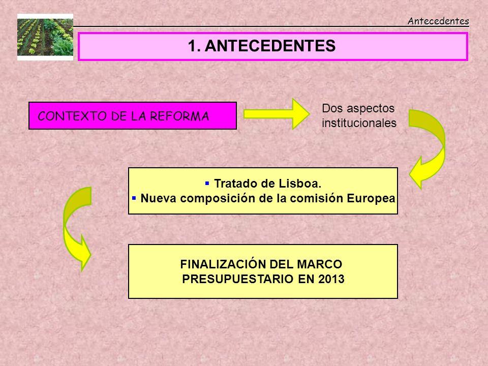 Antecedentes Antecedentes 1. ANTECEDENTES CONTEXTO DE LA REFORMA Dos aspectos institucionales Tratado de Lisboa. Nueva composición de la comisión Euro