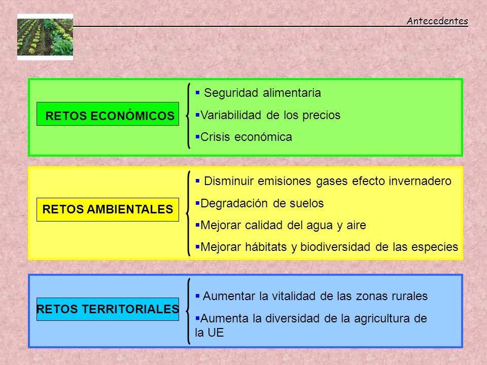 Antecedentes Antecedentes RETOS ECONÓMICOS RETOS AMBIENTALES RETOS TERRITORIALES Disminuir emisiones gases efecto invernadero Degradación de suelos Me